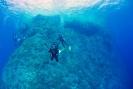 diver_7