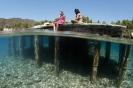 underwater Scenes_1