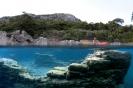 underwater Scenes_2