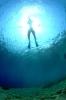 Underwater Scenes_34