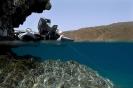 Underwater Scenes_76