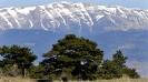 Ilgaz Mountains