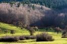 Abant Valley - Bolu