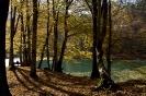 Seven Lakes (Yedigöller) National Park